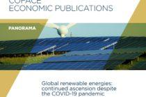 Panorama Coface: las energías renovables avanzan en el mundo a pesar del covid-19.