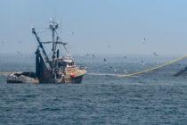 SRT presentó el Manual de Buenas Prácticas para la Actividad de Pesca de Altura