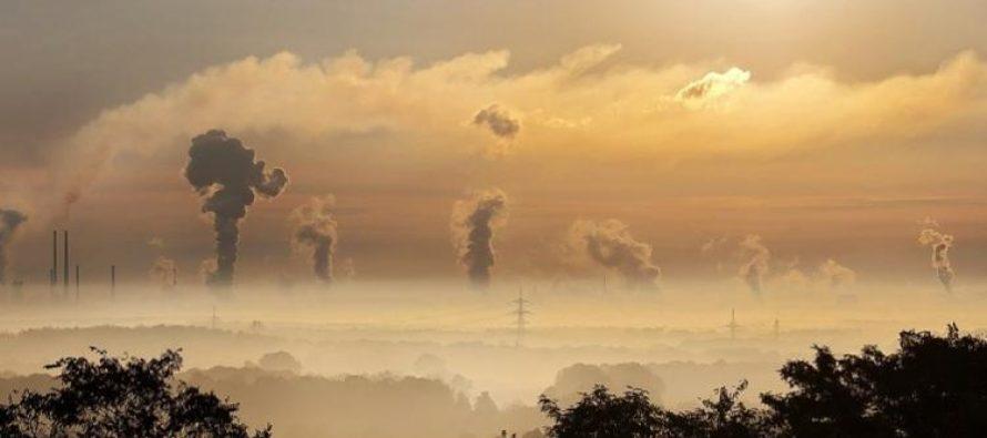 Allianz no renovará pólizas a empresas vinculadas al carbón